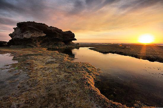 jim_worrall_tidal-dawn.jpg