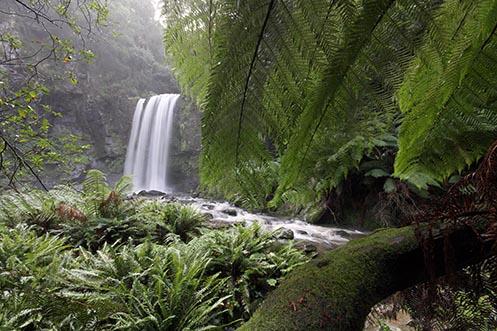 Peeking at the Silky Lady - Hopetoun Falls - Jim Worrall
