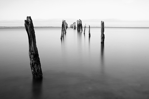 The Counsel of Many - Jim Worrall - Tenby Point - Westernport Bay - Australia