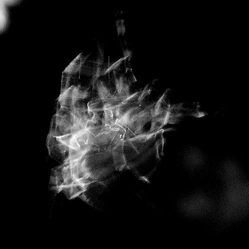 orb2 - Orb-weaver spider movement - Jim Worrall