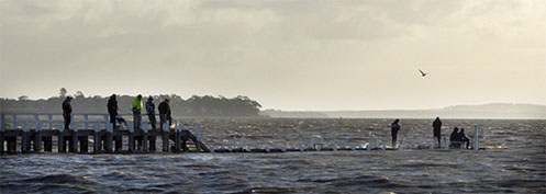 Grantville jetty during a king tide - Jim Worrall - Westernport Bay
