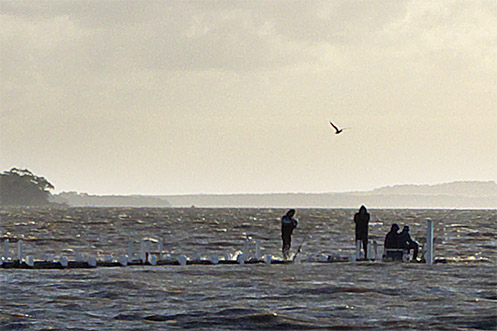 Fishermen on Grantville jetty during a king tide - Jim Worrall - Westernport Bay