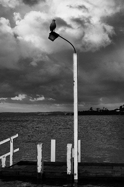 Corinella jetty - Jim Worrall - Corinella - Australia