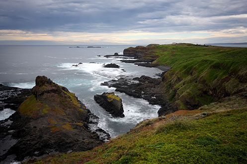 Looking west along The Boulevard towards the Nobbies - Jim Worrall - Phillip Island - Australia