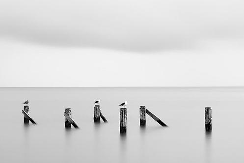 Flinders Hombres - jetty remnants - Jim Worrall - Australia