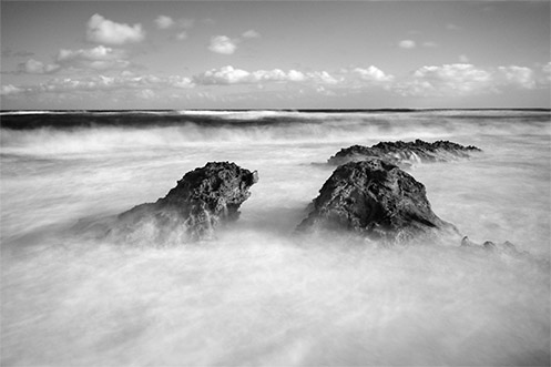 Woolly and Wild - Koonya beach - Blairgowrie - Jim Worrall - Australia