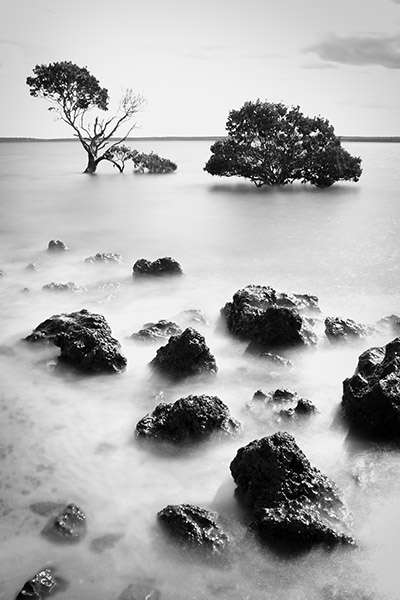 Stepping Stones - Tenby Point - Jim Worrall - Western Port Bay - Australia