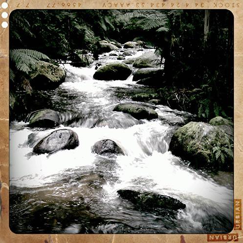 Toorongo River - Retro Camera version - Jim Worrall - Noojee - Australia