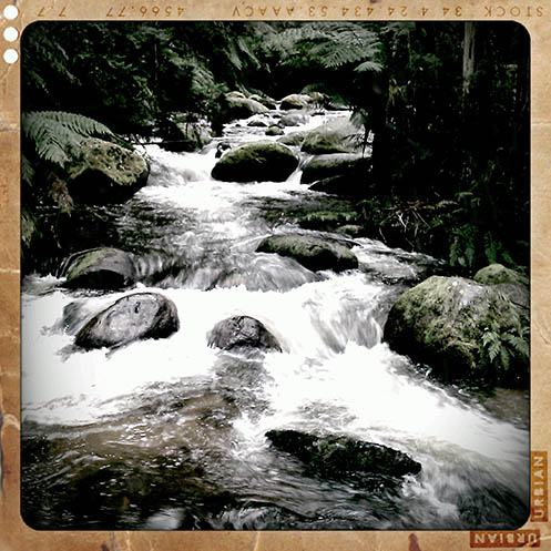 Toorongo River - Retro Camera version - Jim Worrall - Noojee - Australia