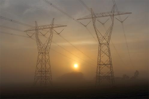 Giants in the Mist - Autumn in Cranbourne - Jim Worrall - fog - Australia