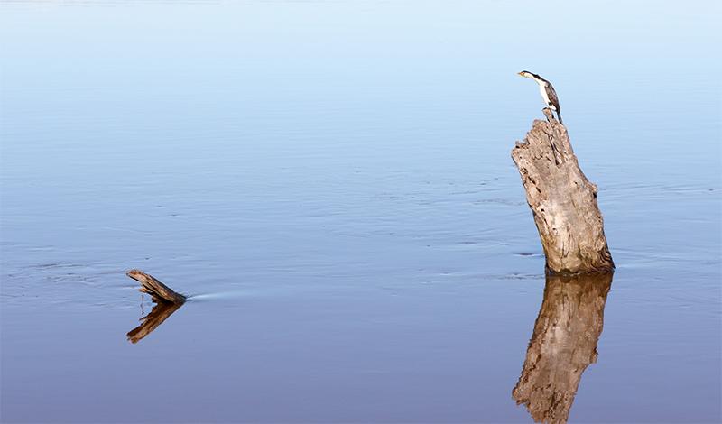 Metung - Lake King - Jim Worrall