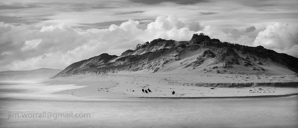 Powlett River - Jim Worrall - Life on the Dunes