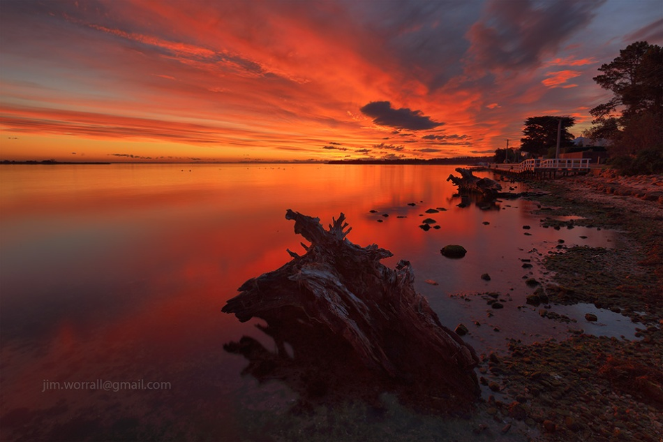 Metung, sunset, Jim Worrall, tree remnants, logs, beach, shoreline
