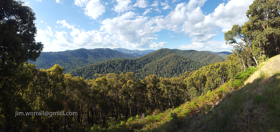 jim worrall, Woods Point Road, mountains, forest, vista